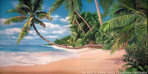 Tropical Beach backdrop image