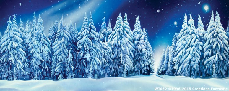 Winter Wonderland Event Backdrop