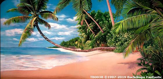 Tropical Beach 3B Party Backdrop